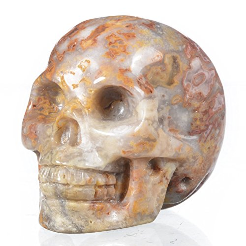 Mineralbiz New Design! 1.8' - 2' Length Natural Crazy Lace Agate Carved Crystal Gemstone Human Skull Head Carving Sculpture