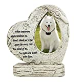 Pet Dog Memorial Stones with Photo Frame, Heart Shaped Pet Garden Stones Dog Grave Markers Tombstones Outdoor or Indoor, Sympaty Pet Memorial Gifts