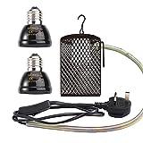 Terrarium Heat Lamps