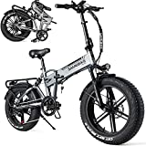 HPDOM Mountain Bicicletas eléctricas,20 Pulgadas neumático 500 W Bicicletas eléctricas Plegables Ebike con 48 V 10 Ah extraíble batería de Iones de Litio para Adultos,Silver