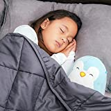 Bed Buddy Weighted Blanket for Kids - Weighted Blanket Twin Size - Heavy Blanket with Weighted Glass Beads, Grey, 7 pounds, for Kids and Toddlers Over 1 Years Old, Child Version (Model: BBF1007-01)