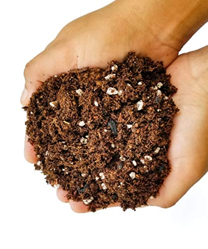 Premium Organic Potting Soil Mix - 1 Gallon (4 Dry Quarts) Great for Planters, Flowers, Seed Starting, Terrariums, House Plants and Hanging Baskets
