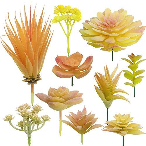 Cayway 10 Pz Succulente Piante Artificiali Giallo Piante Grasse Finte Decorative Uncotted Faux Flower Succulente per Parete DIY Home Decor
