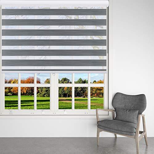 BERISSA Zebra Shades - Estor enrollable de doble capa con filtro de luz, transparente o control de luz de privacidad, cortinas de ventana de día y noche, fácil de instalar
