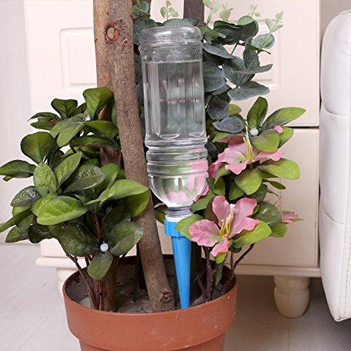 Demiawaking 12 x Gartenkegel Bewässerung Blume Pflanze Waterers Bottle Bewässerungssystem