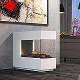 muenkel design loft.line - C-02 Raumteiler [Design Opti-myst Elektrokamin mit Festwasseranschluss]:...