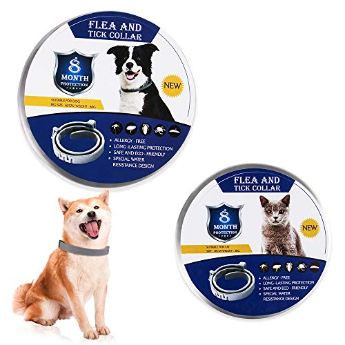 Collar para perros y gatos Collar de prevención de pulgas y garrapatas de 8 meses Collar antipulgas Mosquitos Collar ajustable de silicona para mascotas Accesorios, bolsa de opp de 62 cm para perro
