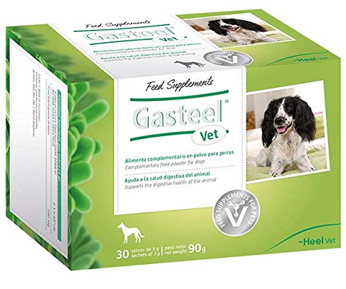 Gasteel Vet Alimento Complementario En Polvo para Perros. Simbiótoco (Probiótico Más Prebiótico) Natural Que Ayuda A La Salud Digestiva del Animal. Sabor Bacon. 90 g