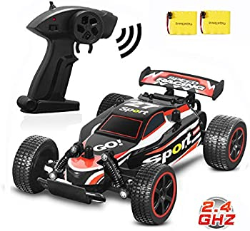 Blexy 2.4Ghz 1/20th Scale 2WD Remote Control Race Car Buggy