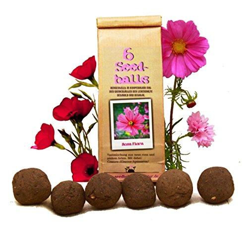 Die Seedball-Manufaktur Seedballs Rosa Flora 6er
