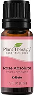 Plant Therapy Rose Absolute Essential Oil 100% Pure, Undiluted, Natural Aromatherapy, Therapeutic Grade 10 mL (1/3 oz)