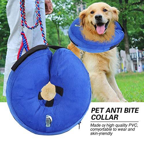 DAUERHAFT Collar Anti-mordida para Mascotas, Color Brillante y diseño de Pajarita Collar de recuperación para Perros Protección postoperatoria de Amigos Peludos