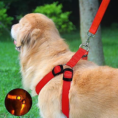 Arnés para perro de talla pequeña, arnés para perro de talla media con 3 modos de iluminación LED, ajustable, correa incluida para correr y caminar
