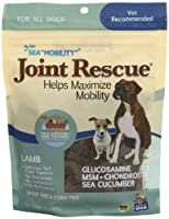 Ark Naturals Sea Mobility Lamb Jerky for Dogs, 9-Ounce Pouches by Ark Lighting