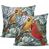 Decoración del hogar, Fundas de Almohada, Divertidas Fundas de Almohada de Invierno con diseño de pájaro Cardenal Rojo Rojo, Estampado Cuadrado de Dos Lados, Juego de 2 de 45 * 45 cm