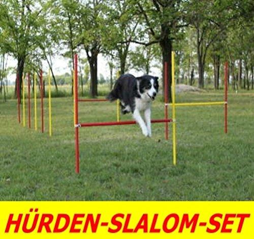Wuzzmann Agility-ÜBUNGS-HÜRDEN/Slalom-STANGEN-Set IN ROT/GELB