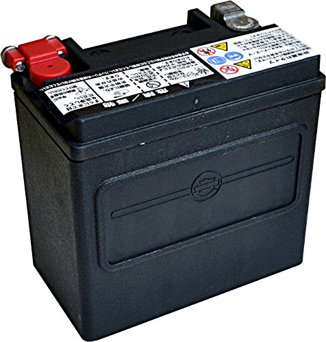 ハーレーダビッドソン [ HARLEY DAVIDSON ] シールド型 バイク用バッテリー [ 液入充電済 ] HD66000208