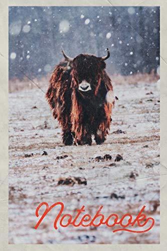 Notebook: Aberdeen Angus Cattle Useful Composition Book Journal Diary for Men, Women,...