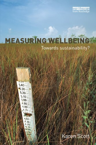 Measuring Wellbeing: Towards Sustainability? (English Edition)