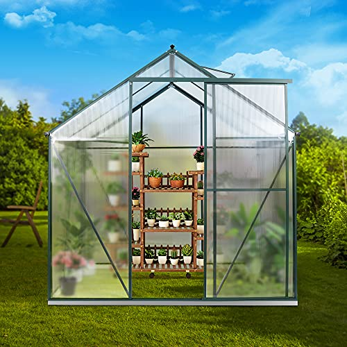 JULY'S SONG Greenhouse,Polycarbonate Walk-in Plant Greenhouse with Window for Winter,Garden Green House Kit for Backyard/Outdoor Use(4'x6')