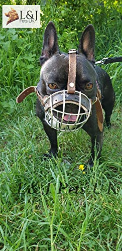 Champion Best Basket Muzzle for French Bulldog | Basket Muzzle for Frenchies Strong Metal Muzzle (B1, Black Leather/Silver)