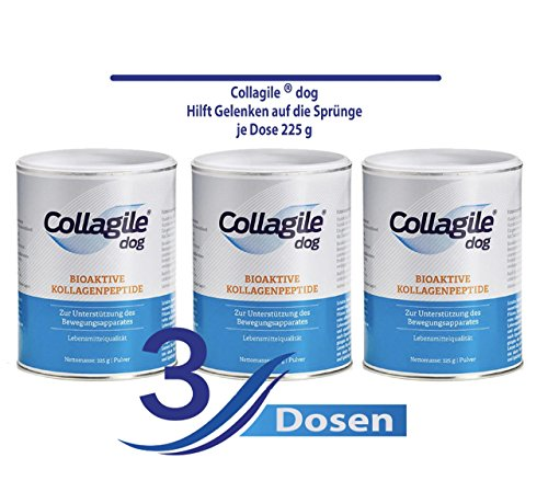 Collagile® Dog - Bioaktive Kollagenpeptide in Lebensmittelqualität 225g (3 x 225g)
