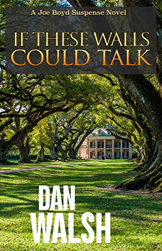 If These Walls Could Talk (Joe Boyd Suspense Series Book 1) by [Dan Walsh]
