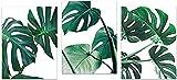 Lienzo impreso nórdico hoja de palma verde hoja de Monstera simple planta tropical pintura de pared decoración de sala de estar 3x30x50cm sin marco