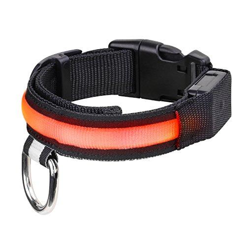 Pawaboo Hundehalsband - Premium 29.9cm - 38cm Verstellbar Leuchthalsband Trainingshalsband Haustier Halsband mit POM Schnellverschluss für Nachtwanderungen, Oranges Licht