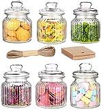Praknu 6 Vorratsgläser Set 700ml Glas | Luftdichte Deckel mit Dichtung | Vorratsbehälter für Lebensmittel