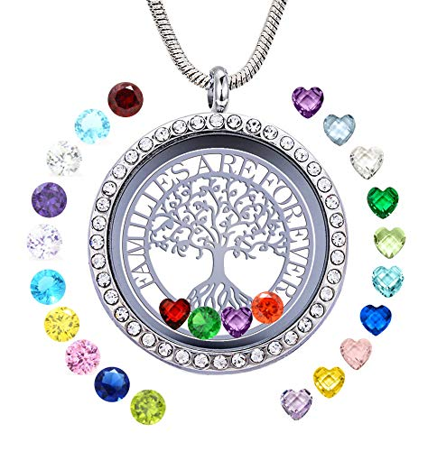 GOKING Familes are Forever Family Tree of Life Floating Locket Necklace with 24 Birthstones, 30mm Round DIY Charms Living Memory Stainless Steel Pendant with Pretty Gift Box Silver (Treeoflife 04)