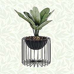 Modern wire frame houseplant pot