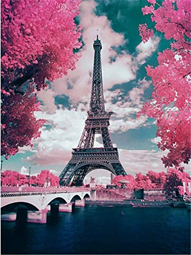 YEESAM ART Neuheiten Malen nach Zahlen Erwachsene Kinder, Frankreich Paris Eiffelturm, Romantische Kirschblüte, Rosa Blüten 40x50 cm Leinen Segeltuch, DIY ölgemälde Weihnachten Geschenke