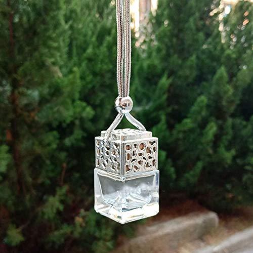 APCHYA 10 piezas de mini botella de perfume vacía de 2,5 x 4,5 cm difusor ambientador accesorios con cordón para coche (plata)