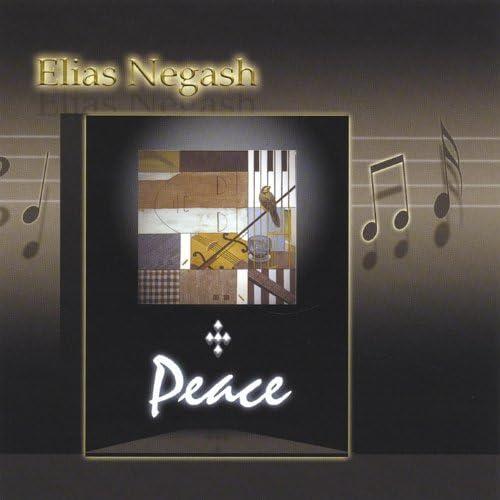 Elias Negash
