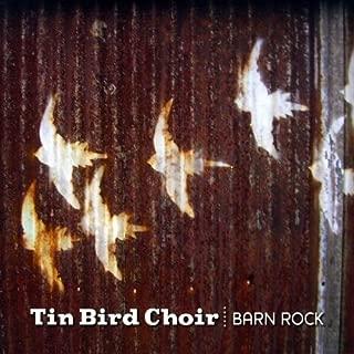 Best tin bird choir Reviews