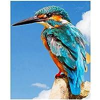 Diyダイヤモンド塗装カワセミ動物5Dストーン刺繍鳥モザイク装飾50x40cm