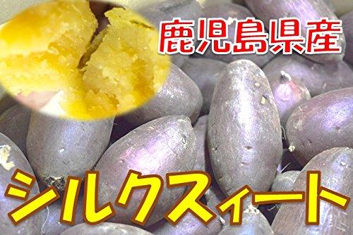 新芋(2019年産) 訳あり 鹿児島県産 シルクスィート S〜Lサイズ混合 1箱:約10kg入り