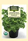 Seeds of Change 06466 Certified Organic Seed, Giant of Italy Parsley