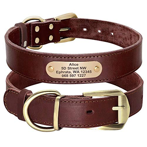 Didog Genuine Leather Dog Collars with Engraved Nameplate, Personalized Soft Leather Dog Collar with Custom ID Tag, Brown/Green/Red for Small Medium Large Dogs