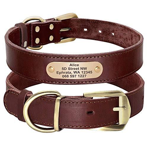 Didog - Collare per cani in morbida vera pelle, con targhetta identificativa incisa, colore marrone, verde e rosso, per cani di taglia media, personalizzabile