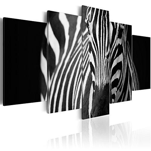 murando - Cuadro en Lienzo 200x100 cm Impresión de 5 Piezas Material Tejido no Tejido Impresión Artística Imagen Gráfica Decoracion de Pared Cebra Animales 030216-19