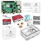 TRASKIT Raspberry Pi 4 Model B Starter Kit/ラズベリーパイ4B(4GB RAM)技適マーク付/MicroSDHCカード32GB NOOBSプリインストール/簡単に取り付けるケース/5.1V/3A Type-C スイッチ付電源/2つのMicroHDMI-to-HDMIケーブルライン/3つヒートシンクと2つの静音冷却ファン/カードリーダ /GPIOリファレンスカード/日本語取扱説明書/2年保証付