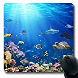Ahawoso Mousepads for Computers Scuba Blue Aquarium Underwater Scene Coral Reef Tropical Fish Wildlife Nature Snorkeling Sea Design Oblong Shape 7.9 x 9.5 Inches Non-Slip Oblong Gaming Mouse Pad