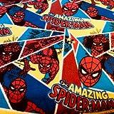 Visage Spiderman Flanell Stoff – Spiderman Shatter –