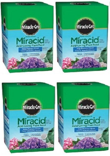 Miracle Gro 1750011 Miracid, 1 LB, 30-10-10 Water Soluble Acid Loving Plant Food - Quantity 4