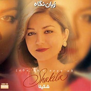 Zabane Negah - Persian Music