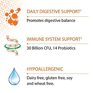Garden of Life - Dr. Formulated Probiotics Once Daily - Acidophilus Probiotic with Daily Support for Digestive and Immune Health - Gluten, Dairy, and Soy-Free - 30 Vegetarian Capsules (Shipped Cold)