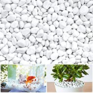 【Great Decorative Stones】: Small white pebbles are natural pebbles, simple and natural. They will bring natural beauty to your decoration places and make them clean and nice. They are great decorations for garden, home, aquariums, etc. 【Bring Natural...