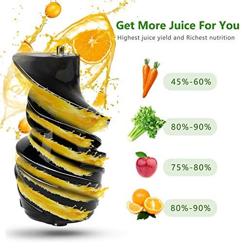 Slow Juicer Saftpresse Slow joy unter 200 Euro – BPA Frei Bild 6*